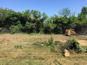 Land & Site Clearing at Industrial Site